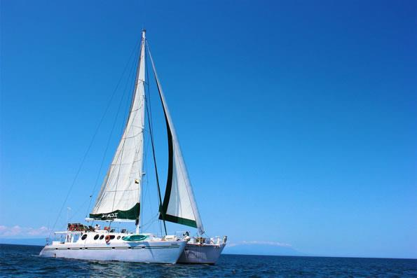 01-large-nemo-ii-motor-sail-catamaran