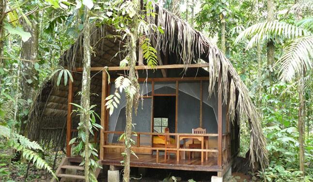 napo-wildlife-centre-in-ecuador